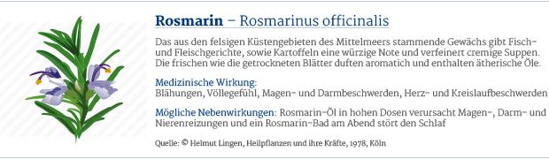 PAR_Heilpflanzen_Rosmarin