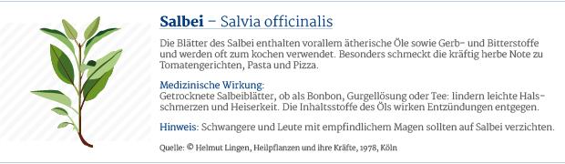 PAR_Heilpflanzen_Salbei